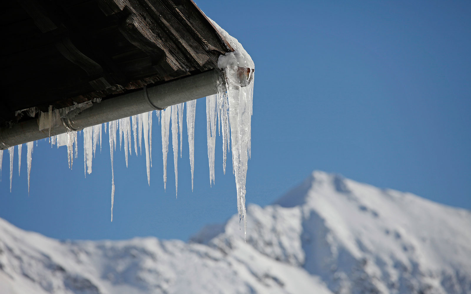 icicles, freezing, cold, winter