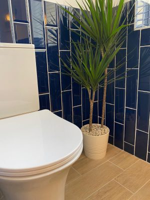 kitchen to bedroom conversion new toilet with blue vertical brick style gloss tiles and feature indoor plant in corner